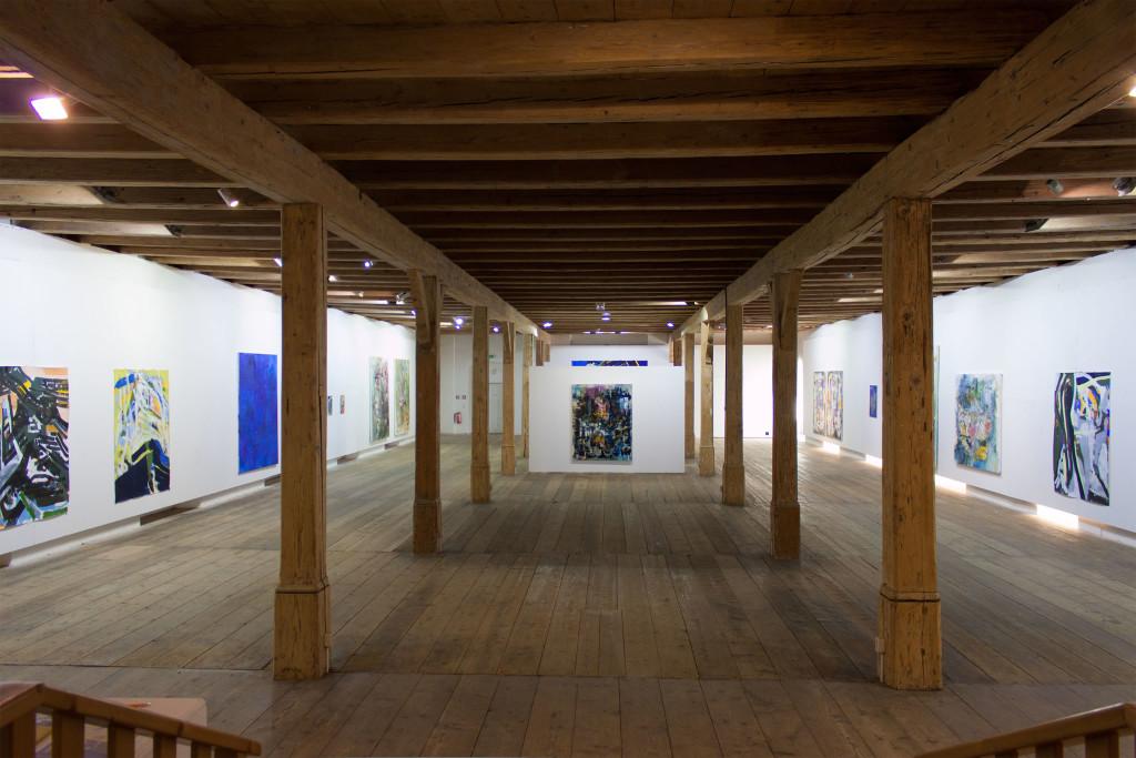 00004 Steyr Exhibition (1)
